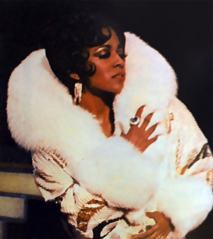 Hayes as Judith Jamison in Sophisticated Ladies, for which she was awarded the NAACP Best Actress Award